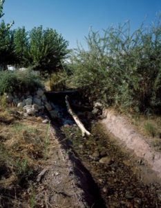 remant of natural spring at mormon fort in las vegas