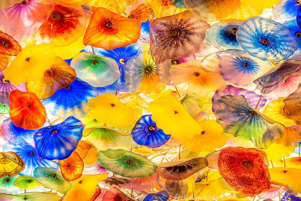 Glass ceiling at the Bellagio