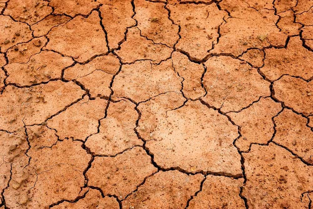 Dry cracked earth showing a lack of water in Las Vegas.