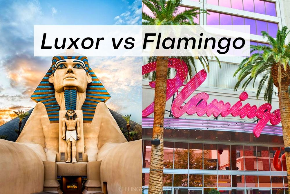 Luxor vs. Flamingo: Which Is Better? [Las Vegas]