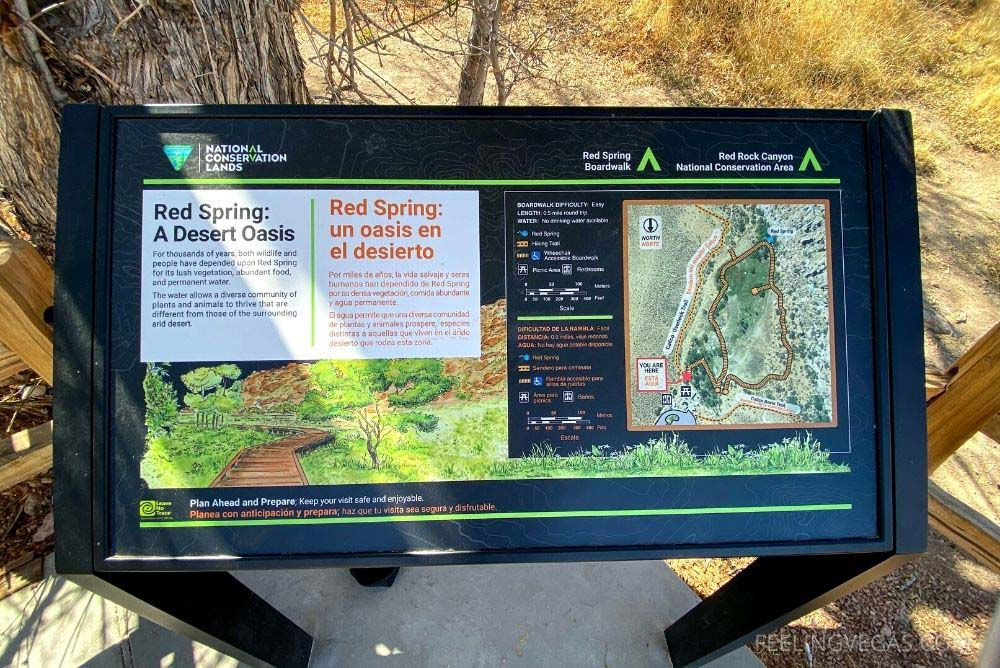 There are several informative signs on boardwalk, telling you about the area.