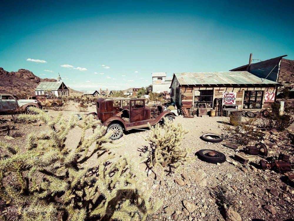 Watch out for cactus when you're walking the property in Nelson ghost town.